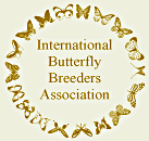 International Butterfly Breeders Association, Inc.